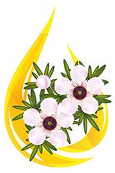 Naturlig nagelsvamp behandling med manuka olja